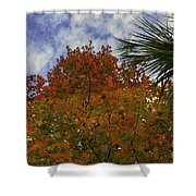 It's Fall Ya'll Shower Curtain