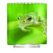 It's Not Easy Being Green Shower Curtain