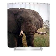 Ivory King Shower Curtain
