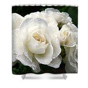 Ivory Rose Bouquet Shower Curtain by Jennie Marie Schell