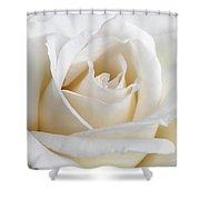 Ivory Rose Flower Shower Curtain