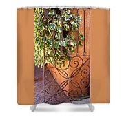 Ivy And Old Iron Gate Shower Curtain