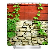 Ivy On Stone And Wood Shower Curtain