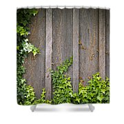 Ivy Wall Frame Shower Curtain
