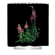 J7046 Shower Curtain