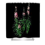 J7063 Shower Curtain