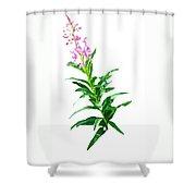 J7143 Shower Curtain