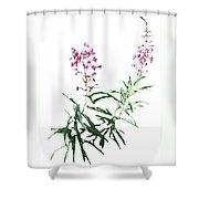 J7145 Shower Curtain