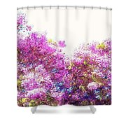 Jacaranda Shower Curtain