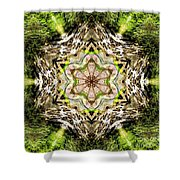 Jack In The Pulpit Mandala Shower Curtain