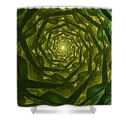Jacks Beanstalk Shower Curtain
