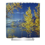 1m9206-jackson Lake And Aspens, Wy Shower Curtain