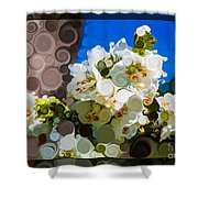 Jacobs Ladder Abstract Flower Painting Shower Curtain