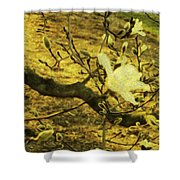 Jade Orchid Shower Curtain