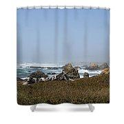 Jagged California Coastline Shower Curtain