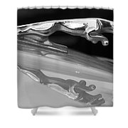 Jaguar Car Hood Ornament Reflection Bw Shower Curtain