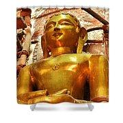 Jain Temple Amarkantak India Shower Curtain