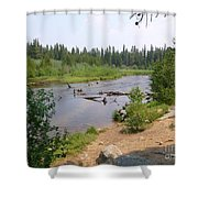 James Creek Pond Shower Curtain