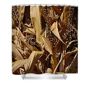 Jammer Corn Abstract 001 Shower Curtain