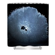 Jammer Cosmos Burst 001 Shower Curtain