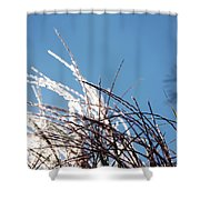 Jammer Crystal Fronds 001 Shower Curtain