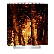 Jammer Fire And Ice 022 Shower Curtain