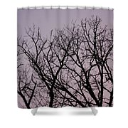 Jammer Fuzzy Trees 002 Shower Curtain
