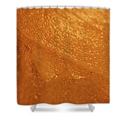 Jammer Tangerine Abstract Shower Curtain