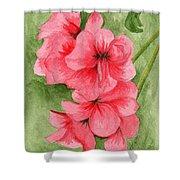 Jane's Flowers Shower Curtain