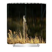 January's Gold 2013 Shower Curtain