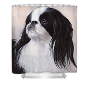 Japanese Chin Painting Shower Curtain