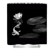 Japanese Koi Fish And Water Lily Flower Black And White Shower Curtain