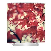 Japanese Maple Leaves - Vintage Shower Curtain