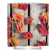 Japanese Maple Tree Leaves On Wood Deck Shower Curtain