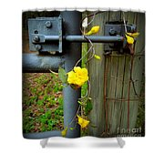 Jasmine Flowers On Gate Latch Shower Curtain
