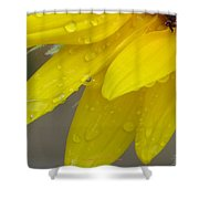 Jaune Petals Shower Curtain