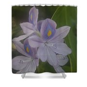 Java Gardens Shower Curtain