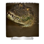 Jaws V6 Shower Curtain