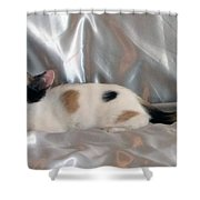 Jazmine Shower Curtain