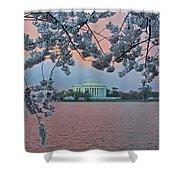 Jefferson Memorial Cherry Blossoms Shower Curtain