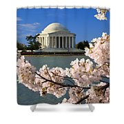 Jefferson Memorial Cherry Trees Shower Curtain