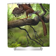 Jeholornis Prima Perched On A Tree Shower Curtain by Sergey Krasovskiy