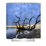 Jekyll Island Seascape Shower Curtain