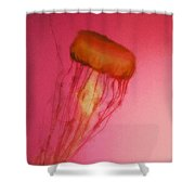 Jelly 1 Shower Curtain
