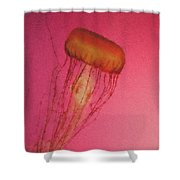 Jelly 1 Pastel Chalk Shower Curtain