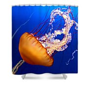 Jelly #2 Shower Curtain