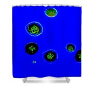 Jelly Fish Art Shower Curtain