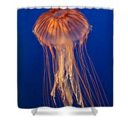 Jelly Fish Shower Curtain by Eti Reid