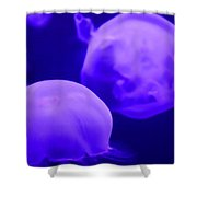 Jelly One Shower Curtain