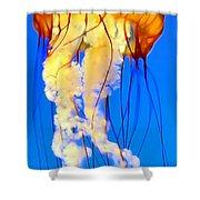 Jellyfish 5 Shower Curtain